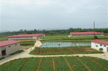 养殖基地2
